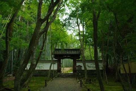 地蔵院総門